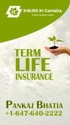 Insurance Agent in Ontario